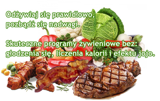 Program żywienia