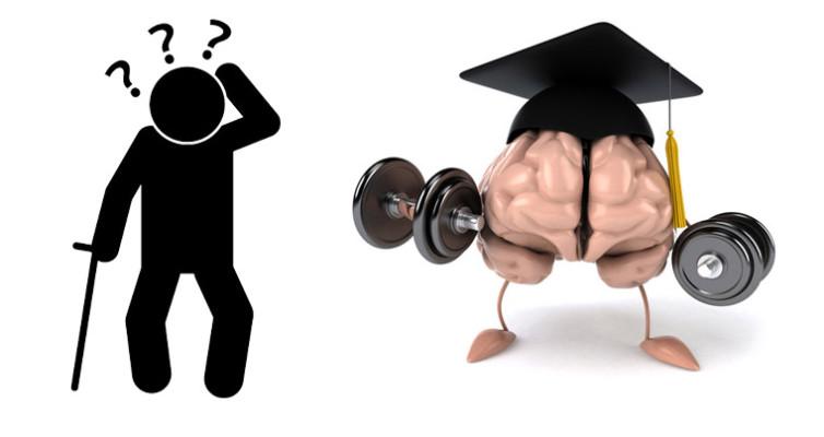 Konserwacja i usprawnienie układu nerwowego.